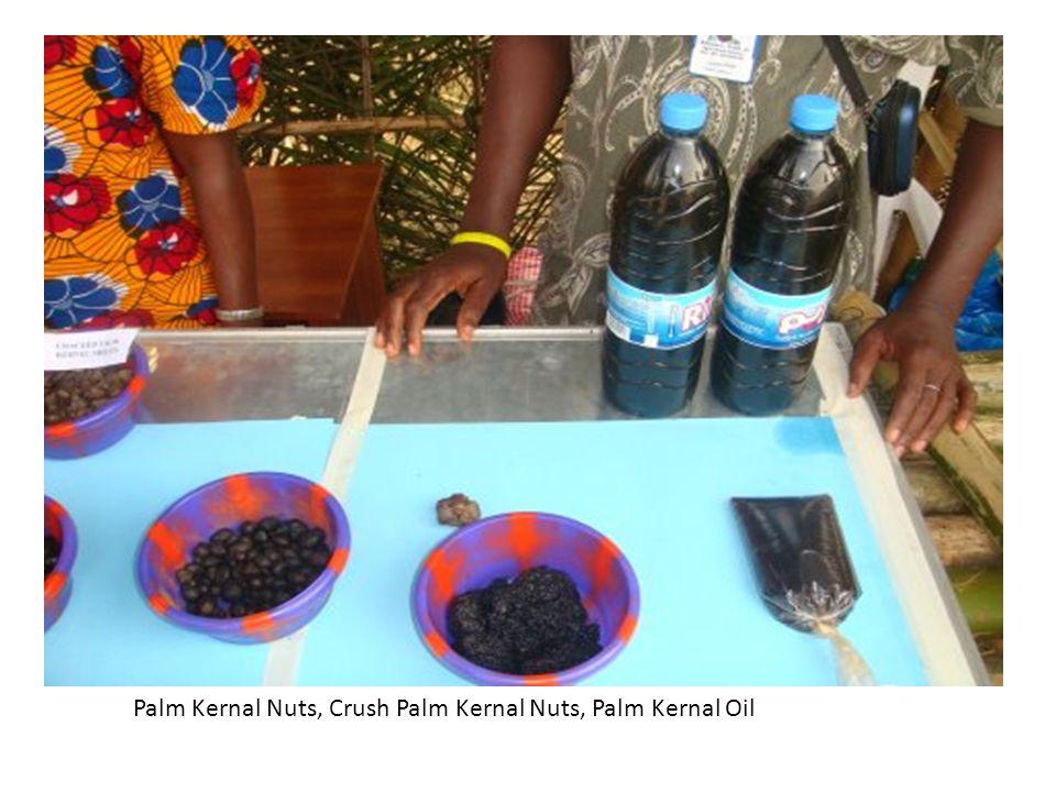 Palm Kernal Nuts, Crush Palm Kernal Nuts, Palm Kernal Oil