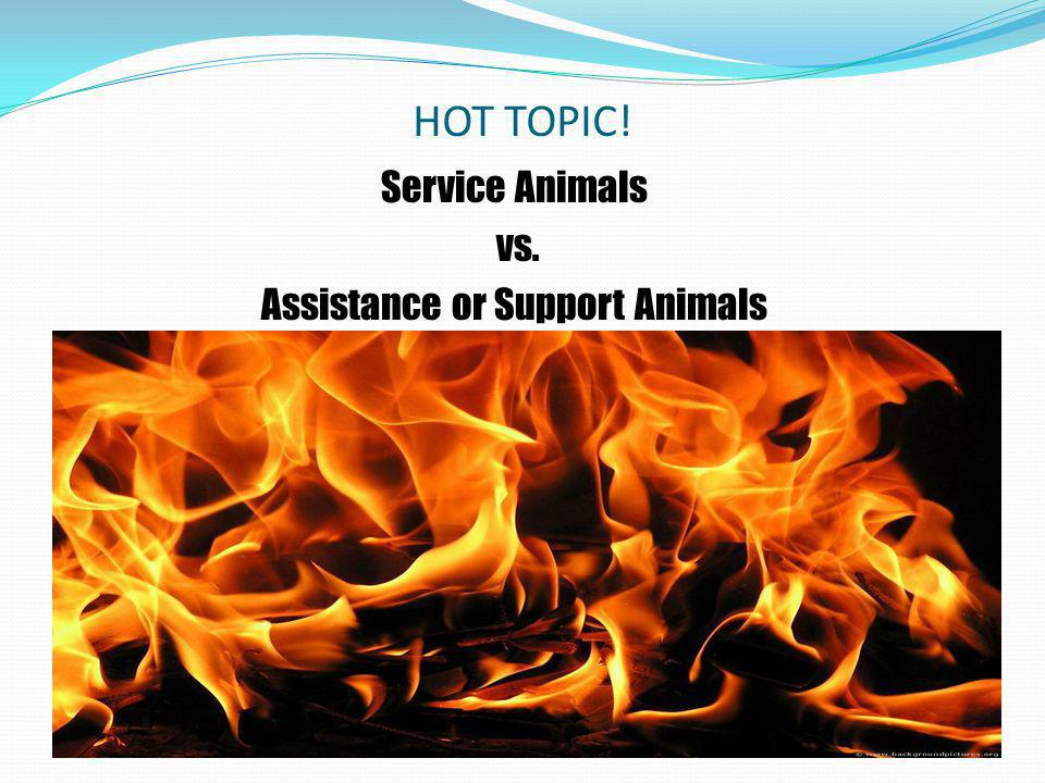 HOT TOPIC! Service Animals vs. Assistance or Support Animals