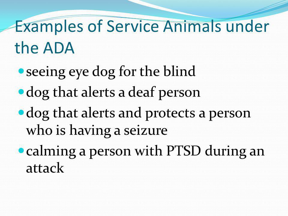Examples of Service Animals under the ADA seeing eye dog for the blind dog that alerts a deaf person dog that alerts and protects a person who is havi