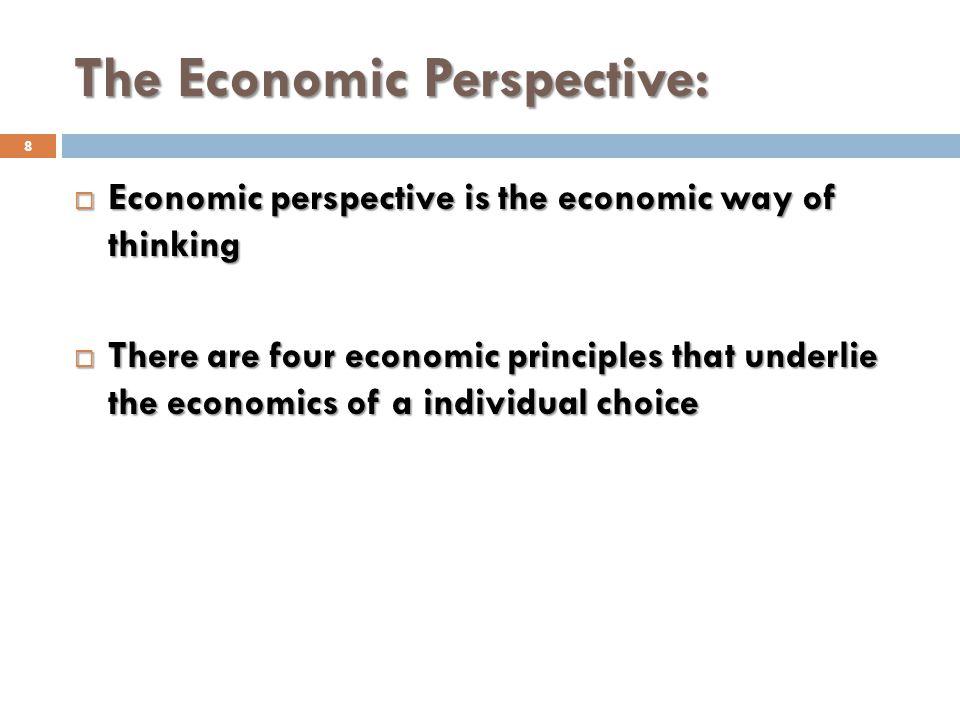 THE ECONOMIC PERSPECTIVE 29
