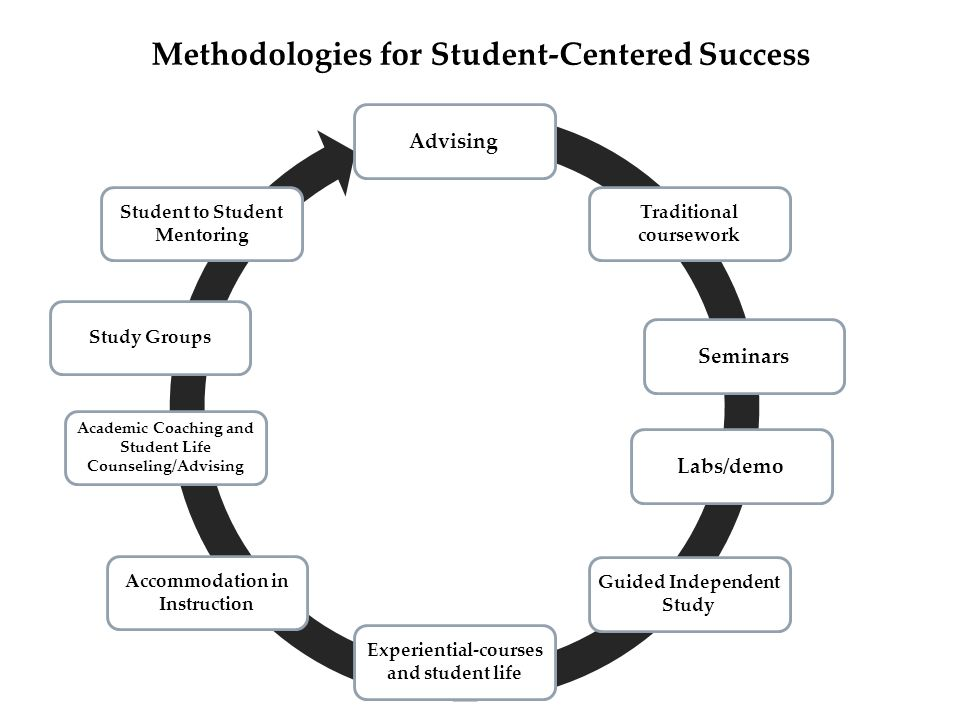 Advising Traditional coursework SeminarsLabs/demo Guided Independent Study Experiential-courses and student life Accommodation in Instruction Academic Coaching and Student Life Counseling/Advising Study Groups Student to Student Mentoring Methodologies for Student-Centered Success