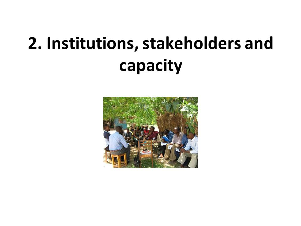 2. Institutions, stakeholders and capacity