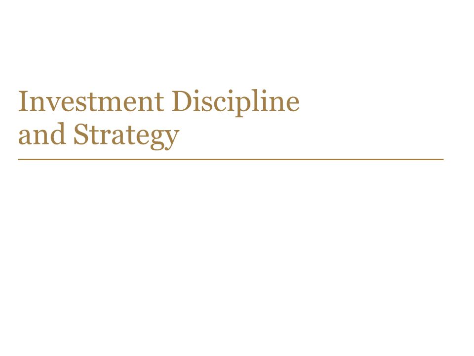 24 Investment Discipline and Strategy