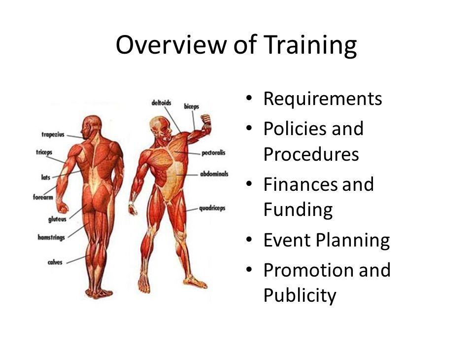 Overview of Training Requirements Policies and Procedures Finances and Funding Event Planning Promotion and Publicity
