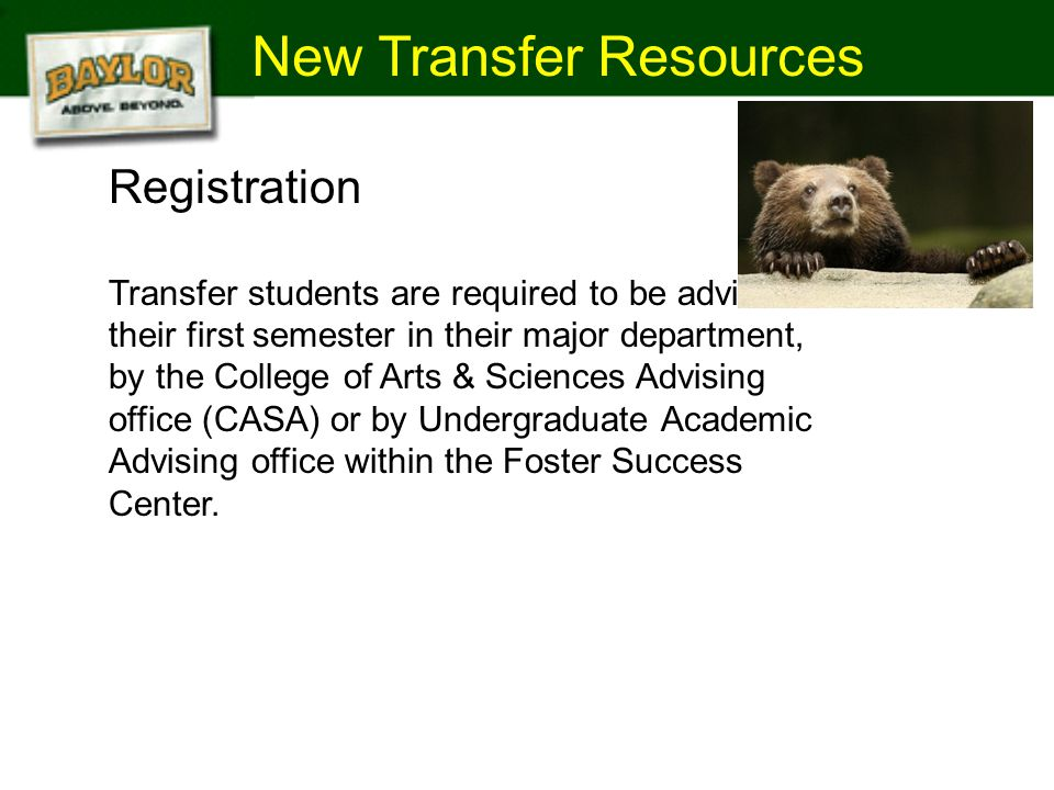 New Transfer Resources 2008 Statewide Enrollment - 610,495 Baylor Joes Registration Transfer students are required to be advised their first semester in their major department, by the College of Arts & Sciences Advising office (CASA) or by Undergraduate Academic Advising office within the Foster Success Center.