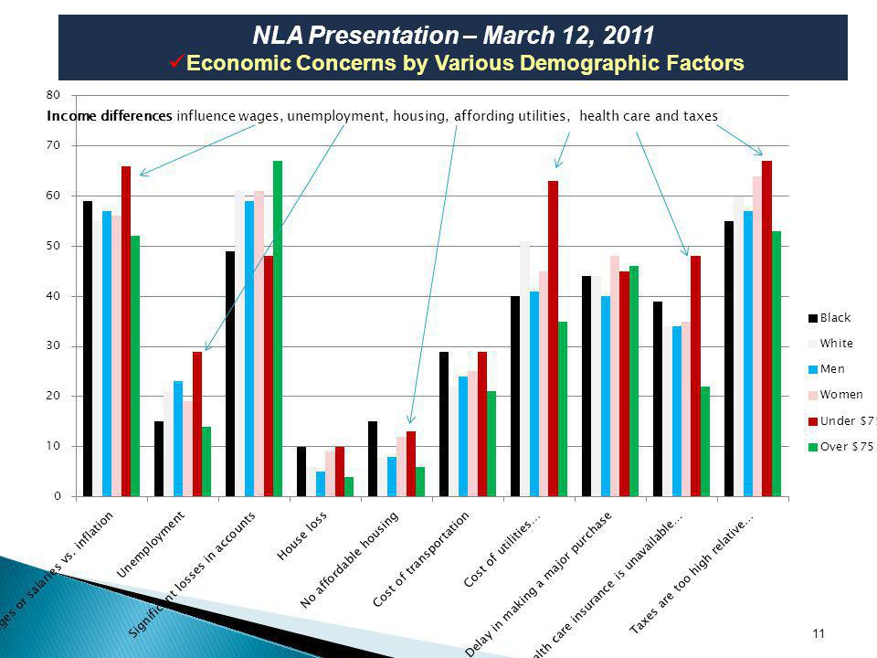 11 NLA Presentation – March 12, 2011 Economic Concerns by Various Demographic Factors