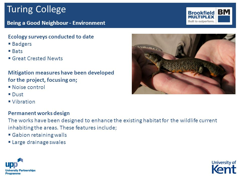 Turing College Being a Good Neighbour - Environment Ecology surveys conducted to date Badgers Bats Great Crested Newts Mitigation measures have been d