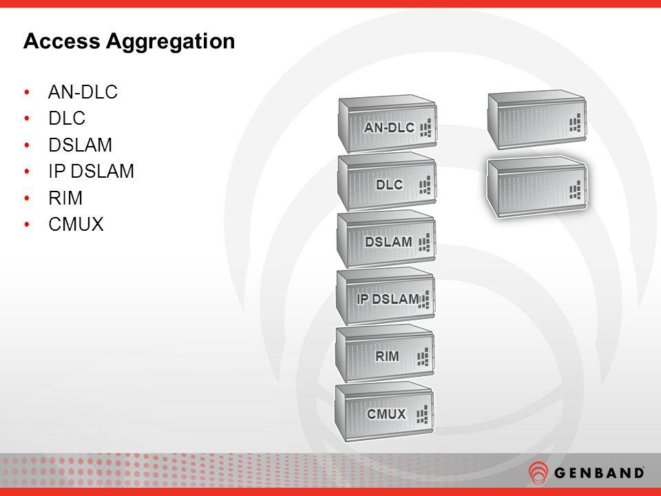 AN-DLC DLC DSLAM IP DSLAM RIM CMUX Access Aggregation