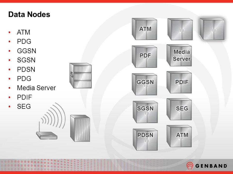 ATM PDG GGSN SGSN PDSN PDG Media Server PDIF SEG Data Nodes