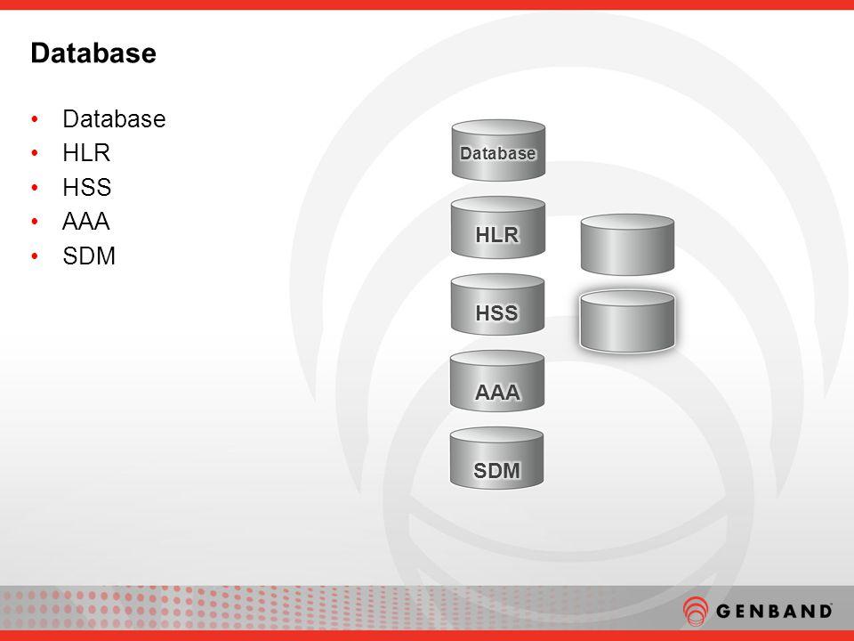 Database HLR HSS AAA SDM Database