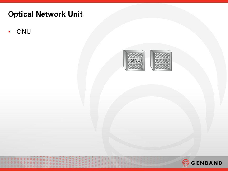 ONU Optical Network Unit