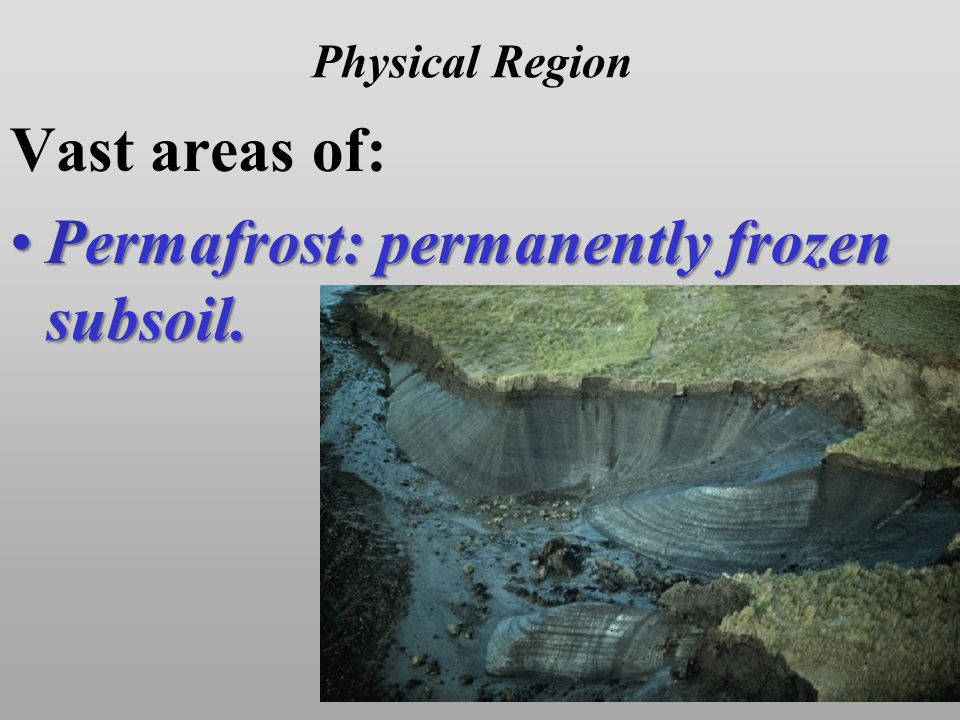 Physical Region Vast areas of: Permafrost: permanently frozen subsoil.Permafrost: permanently frozen subsoil.