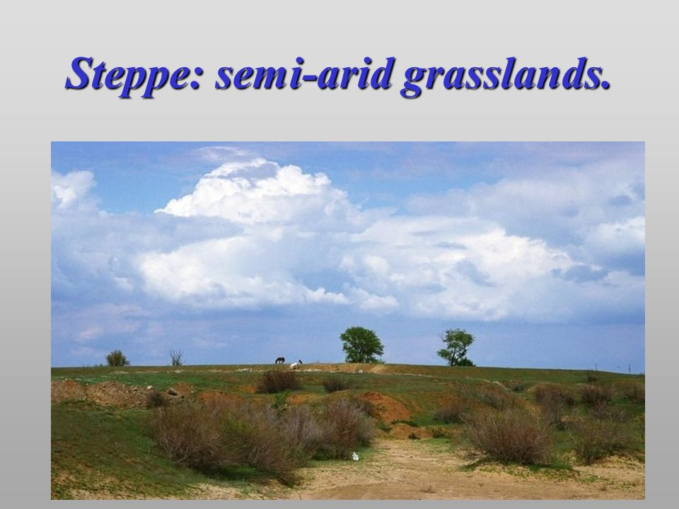 Steppe: semi-arid grasslands.