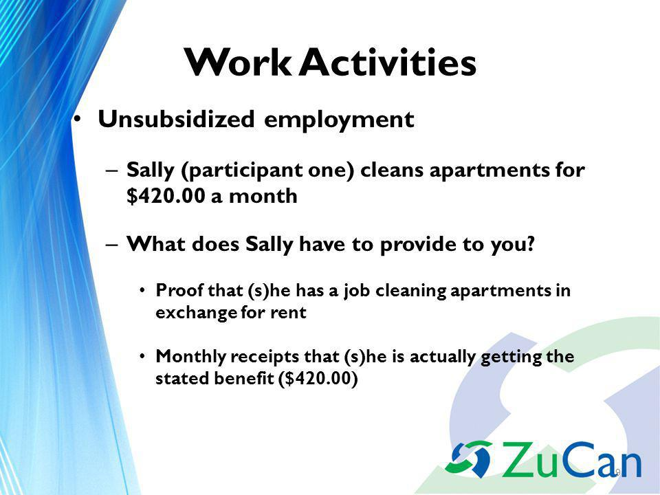 Work Activities Unsubsidized employment – Sally (participant one) cleans apartments for $ a month – What does Sally have to provide to you.