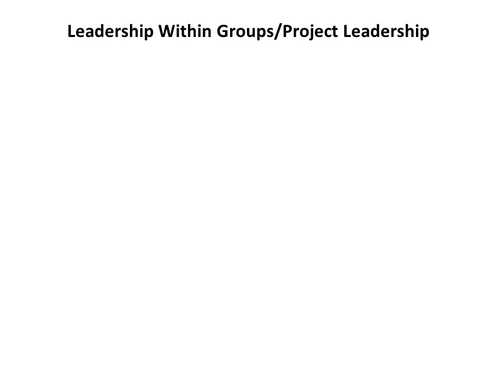 Leadership Within Groups/Project Leadership