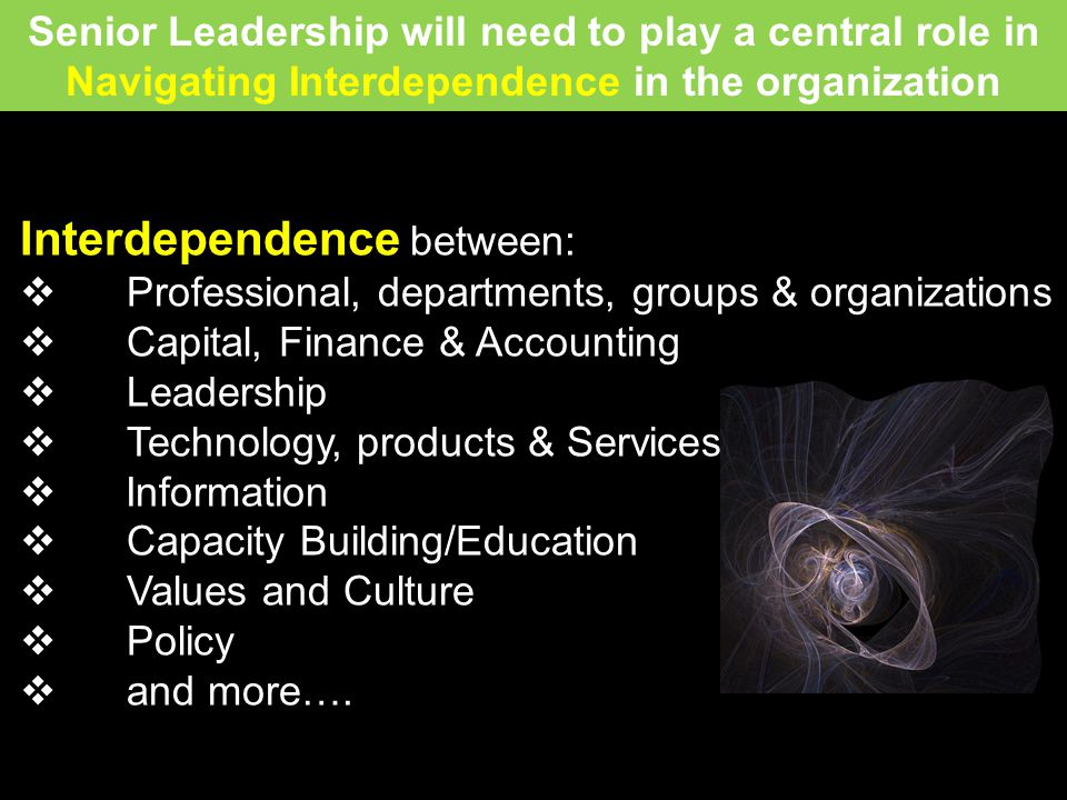 Interdependence between: Professional, departments, groups & organizations Capital, Finance & Accounting Leadership Technology, products & Services Information Capacity Building/Education Values and Culture Policy and more….