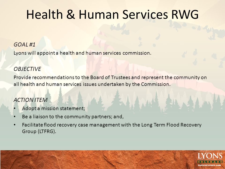 Health & Human Services RWG GOAL #1 Lyons will appoint a health and human services commission.