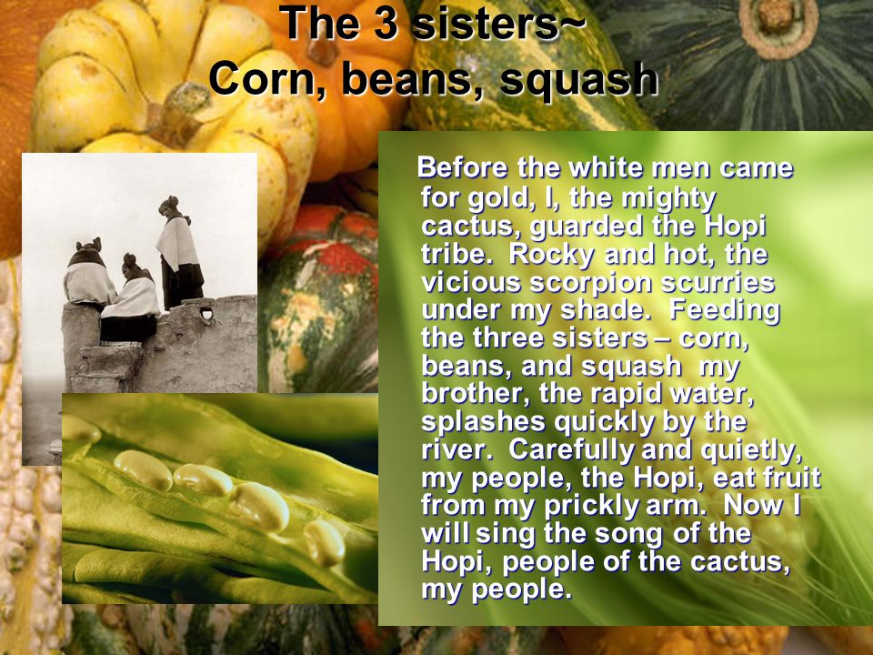 The 3 sisters~ Corn, beans, squash Before the white men came for gold, I, the mighty cactus, guarded the Hopi tribe.