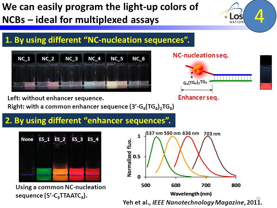 36 NC_1 NC_2 NC_3 NC_4 NC_5 NC_6 Left: without enhancer sequence.
