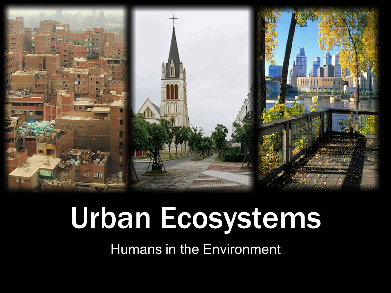 Urban Ecosystems Humans in the Environment