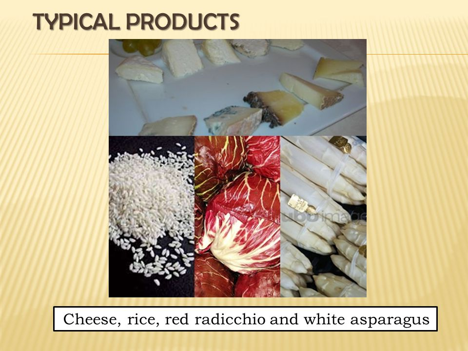 TYPICAL PRODUCTS Cheese, rice, red radicchio and white asparagus