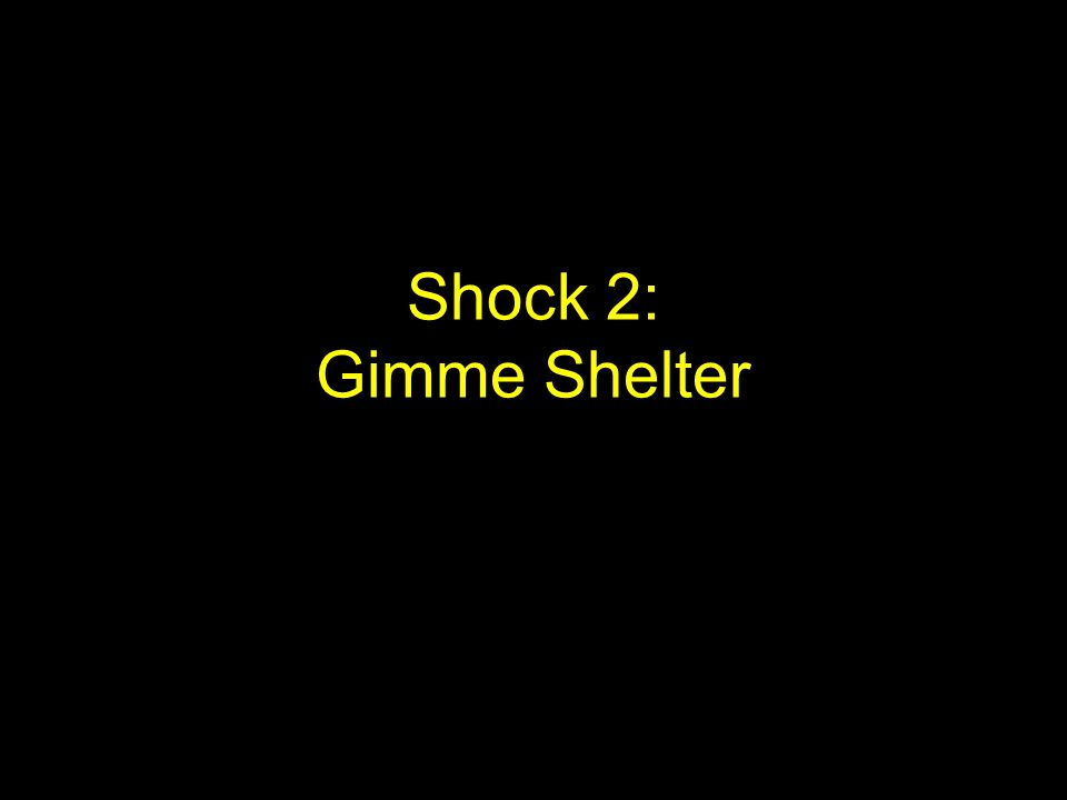 Gimme Shelter One of the main needs for survival in any situation is shelter.