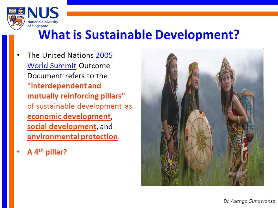 What is Sustainable Development? The United Nations 2005 World Summit Outcome Document refers to the