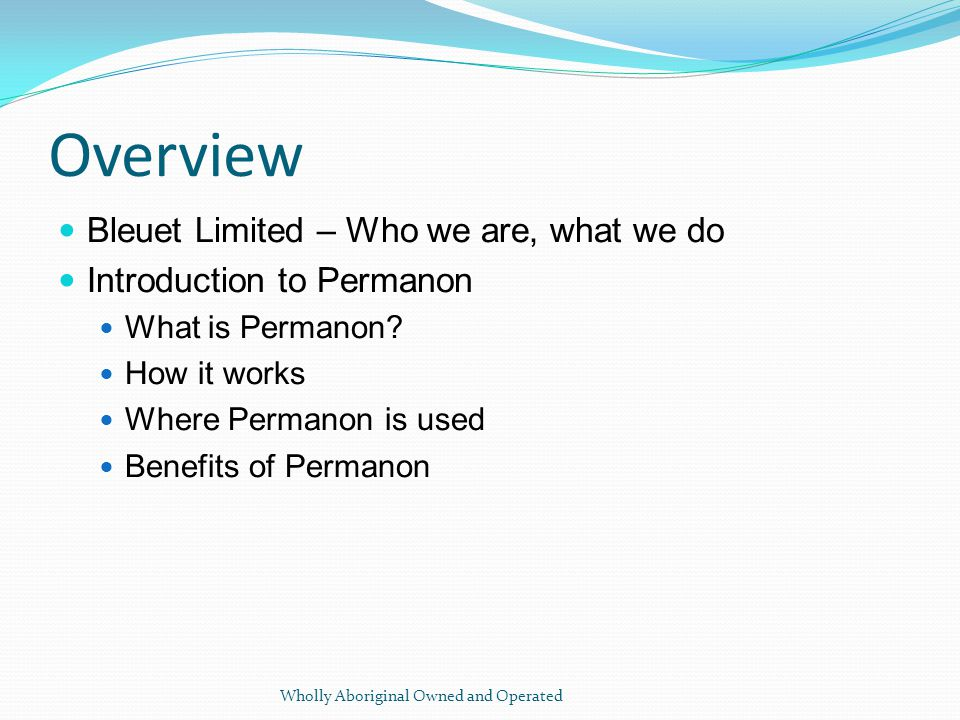 Overview Bleuet Limited – Who we are, what we do Introduction to Permanon What is Permanon.