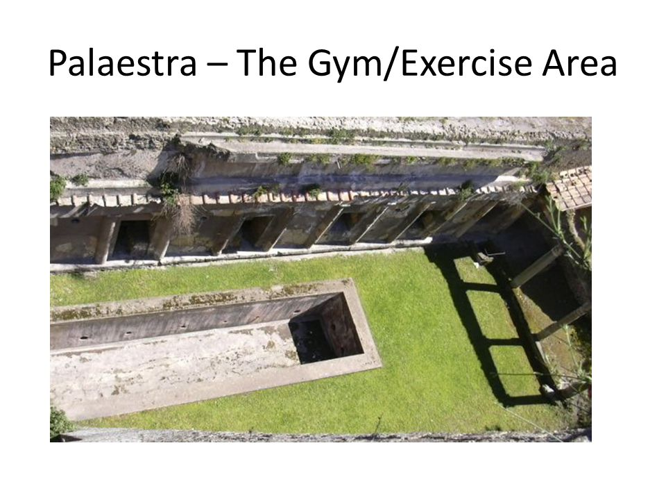 Palaestra – The Gym/Exercise Area