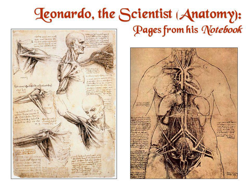 Leonardo, the Scientist (Biology): Pages from his Notebook An example of the humanist desire to unlock the secrets of nature.