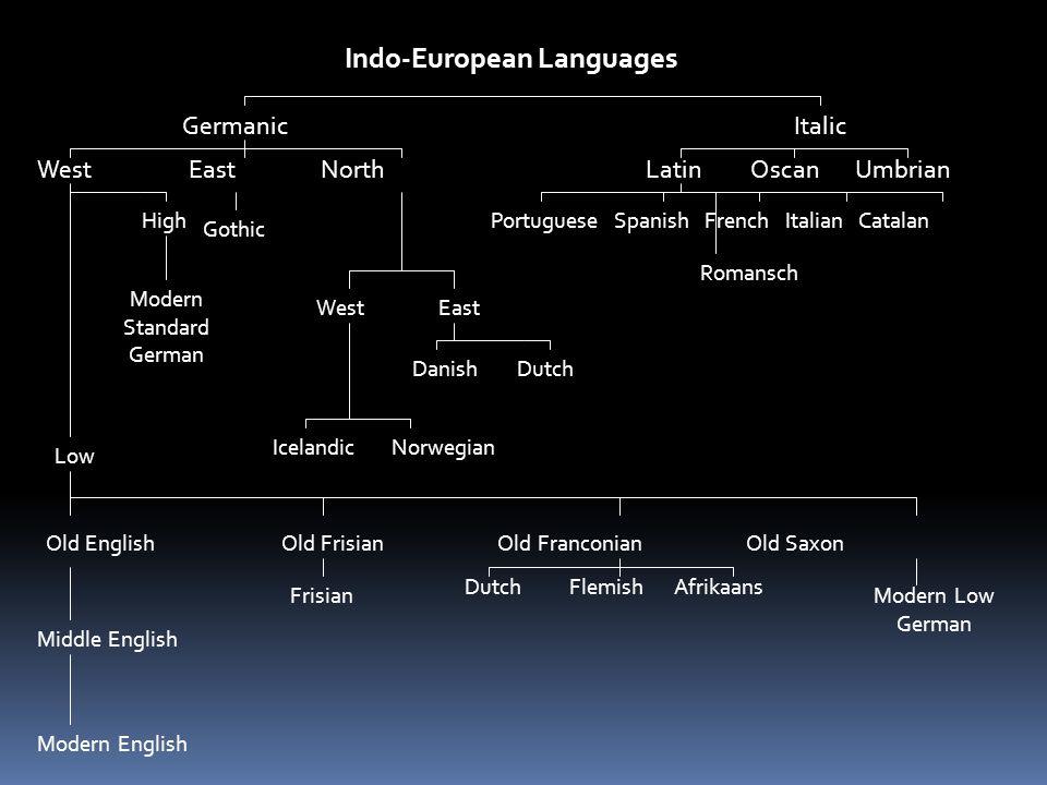 Indo-European Languages ItalicGermanic LatinOscanUmbrian Portuguese Spanish French Italian Catalan Romansch West East North Gothic WestEast DanishDutc