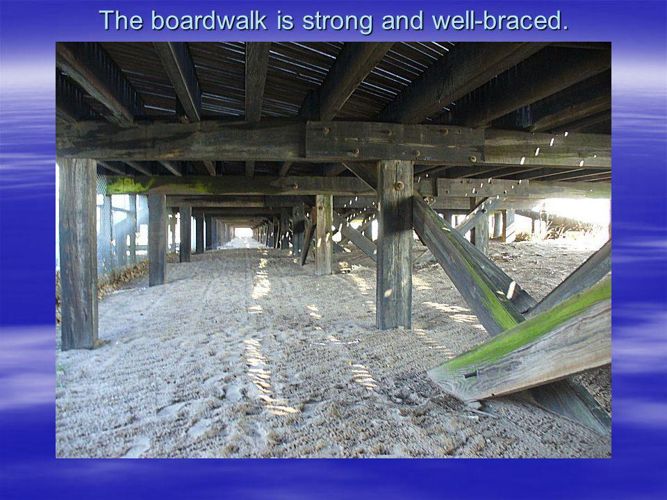 The boardwalk is strong and well-braced.