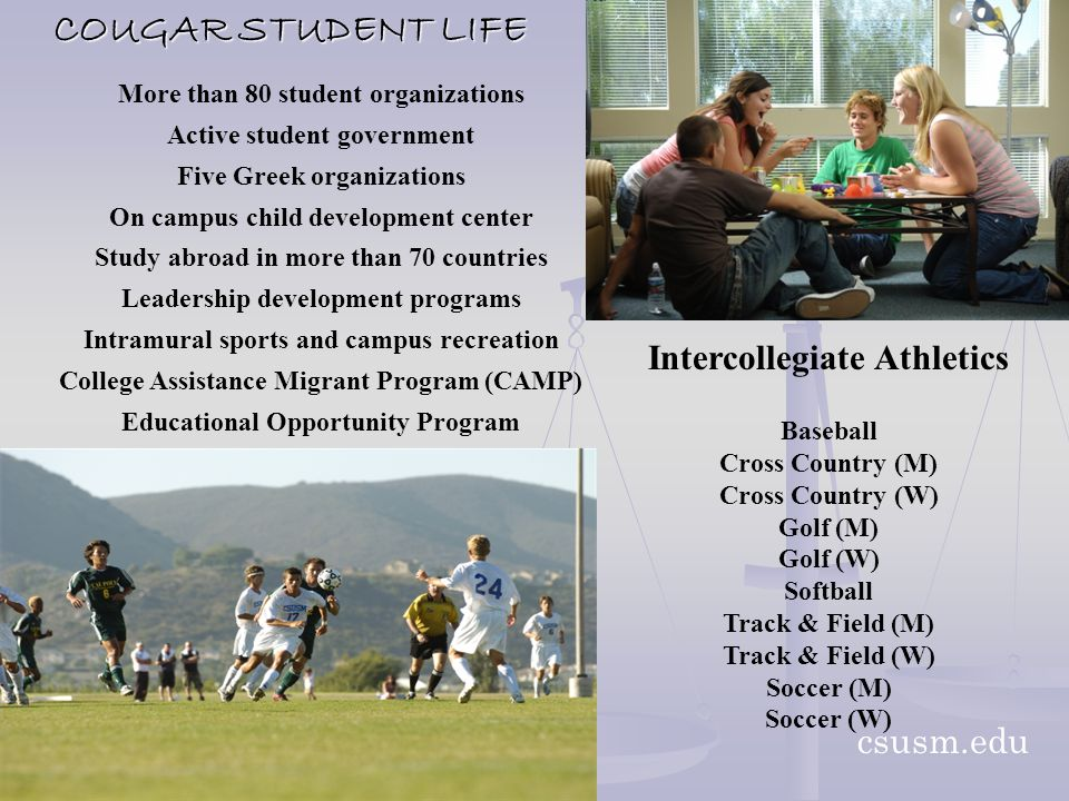 COUGAR STUDENT LIFE More than 80 student organizations Active student government Five Greek organizations On campus child development center Study abroad in more than 70 countries Leadership development programs Intramural sports and campus recreation College Assistance Migrant Program (CAMP) Educational Opportunity Program csusm.edu Intercollegiate Athletics Baseball Cross Country (M) Cross Country (W) Golf (M) Golf (W) Softball Track & Field (M) Track & Field (W) Soccer (M) Soccer (W)