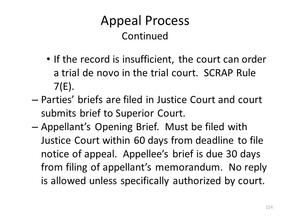 Appeal Process Continued If the record is insufficient, the court can order a trial de novo in the trial court. SCRAP Rule 7(E). – Parties briefs are