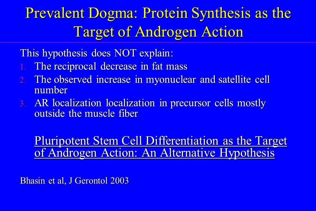 Prevalent Dogma: Protein Synthesis as the Target of Androgen Action This hypothesis does NOT explain: 1. The reciprocal decrease in fat mass 2. The ob