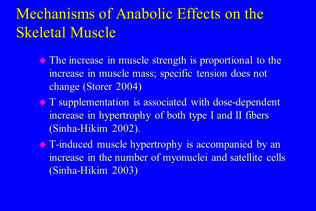 Mechanisms of Anabolic Effects on the Skeletal Muscle u The increase in muscle strength is proportional to the increase in muscle mass; specific tensi