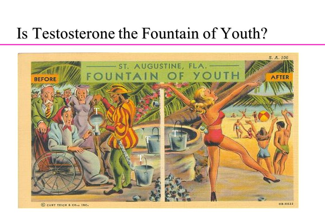 Is Testosterone the Fountain of Youth? T T T T