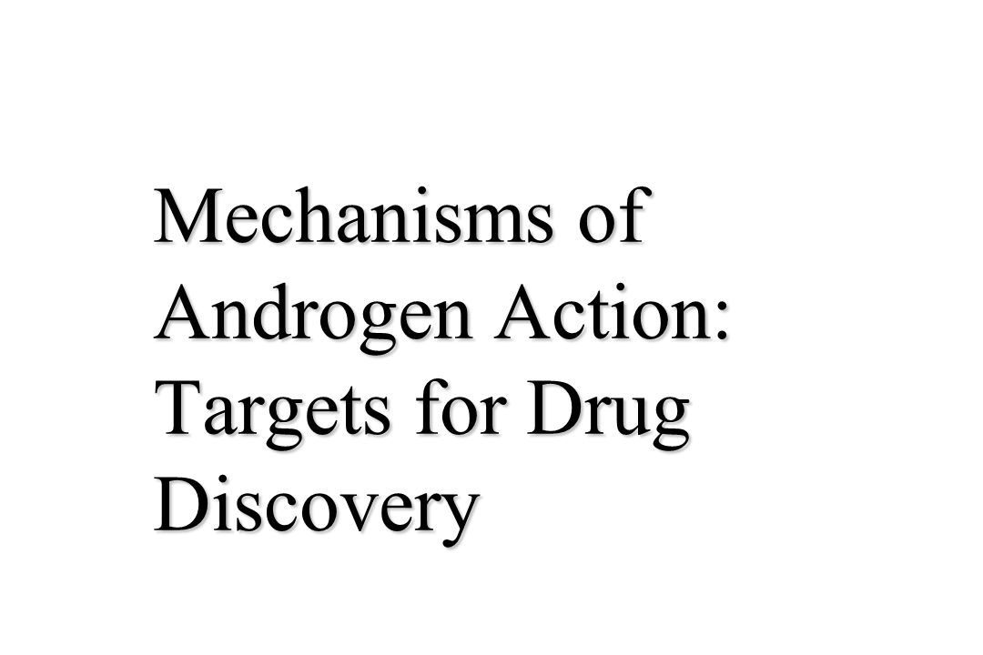 Mechanisms of Androgen Action: Targets for Drug Discovery