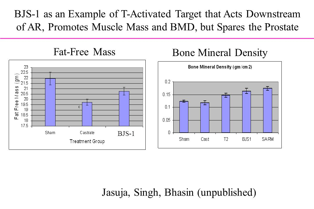BJS-1 as an Example of T-Activated Target that Acts Downstream of AR, Promotes Muscle Mass and BMD, but Spares the Prostate BJS-1 Jasuja, Singh, Bhasi