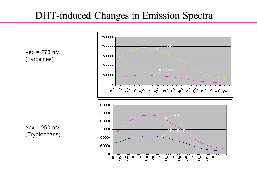 DHT-induced Changes in Emission Spectra AR AR + DHT lex = 278 nM (Tyrosines) lex = 290 nM (Tryptophans) AR AR + DHT