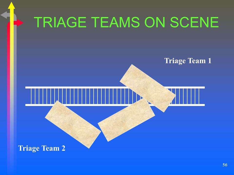 56 TRIAGE TEAMS ON SCENE Triage Team 2 Triage Team 1