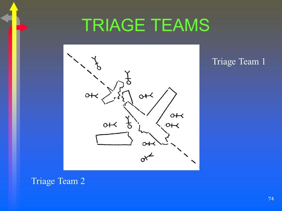 74 TRIAGE TEAMS Triage Team 1 Triage Team 2