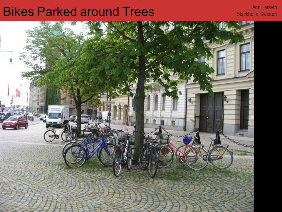 www.annforsyth.net Bikes Parked around Trees Ann Forsyth Stockholm, Sweden