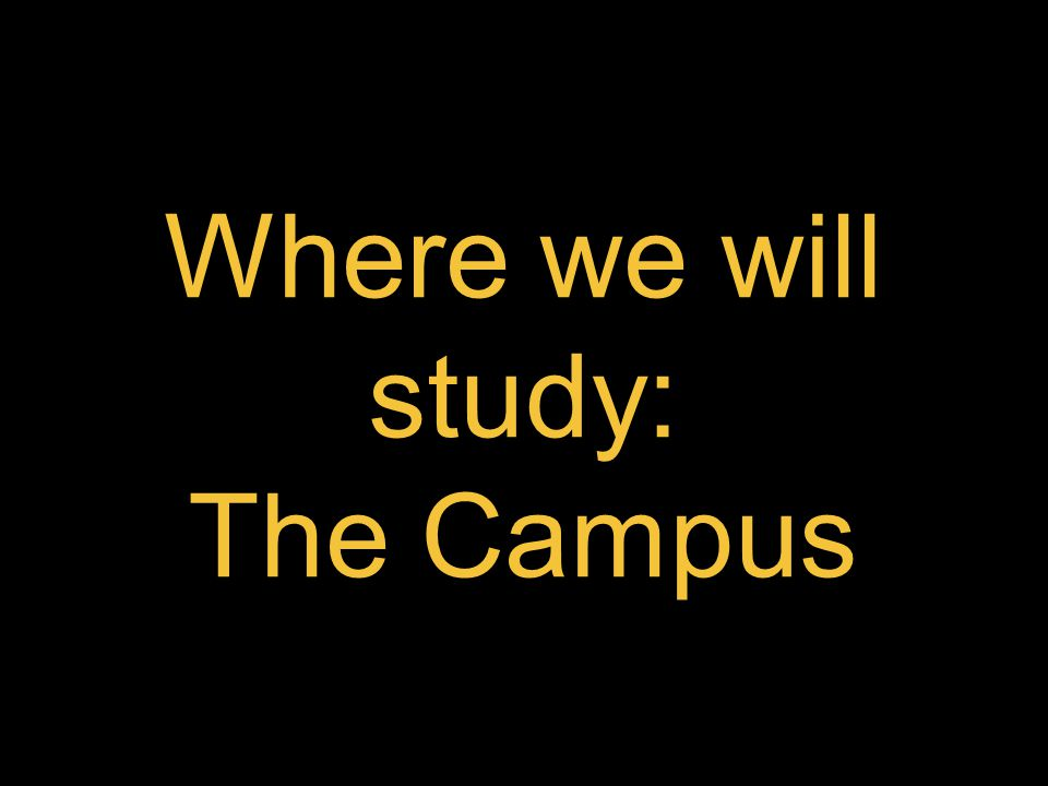 Where we will study: The Campus
