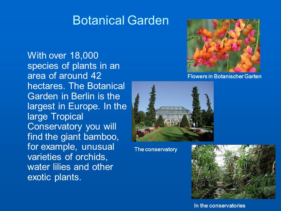 Botanical Garden With over 18,000 species of plants in an area of around 42 hectares.