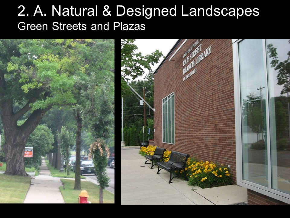 2. A. Natural & Designed Landscapes Green Streets and Plazas