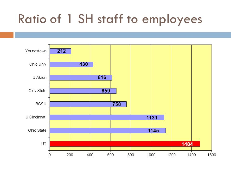 Ratio of 1 SH staff to employees
