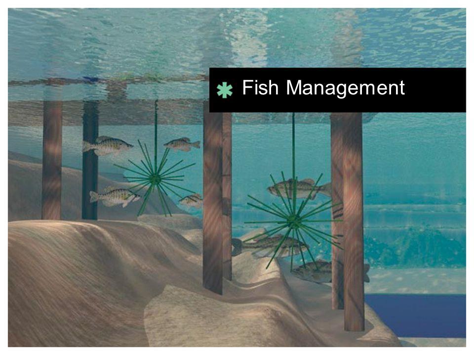 Fish Management