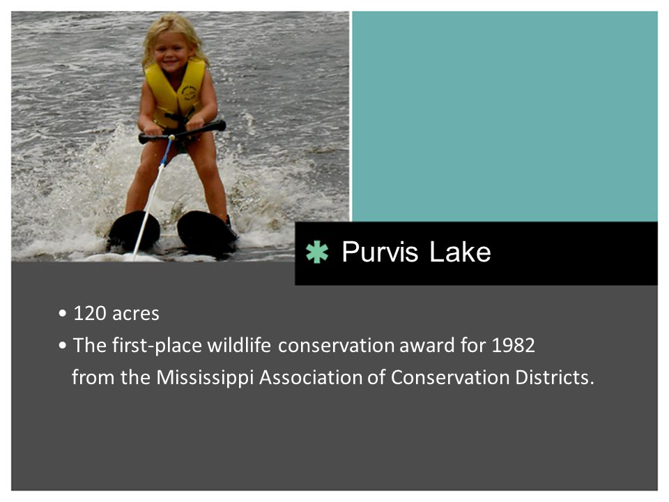 120 acres The first-place wildlife conservation award for 1982 from the Mississippi Association of Conservation Districts. Purvis Lake