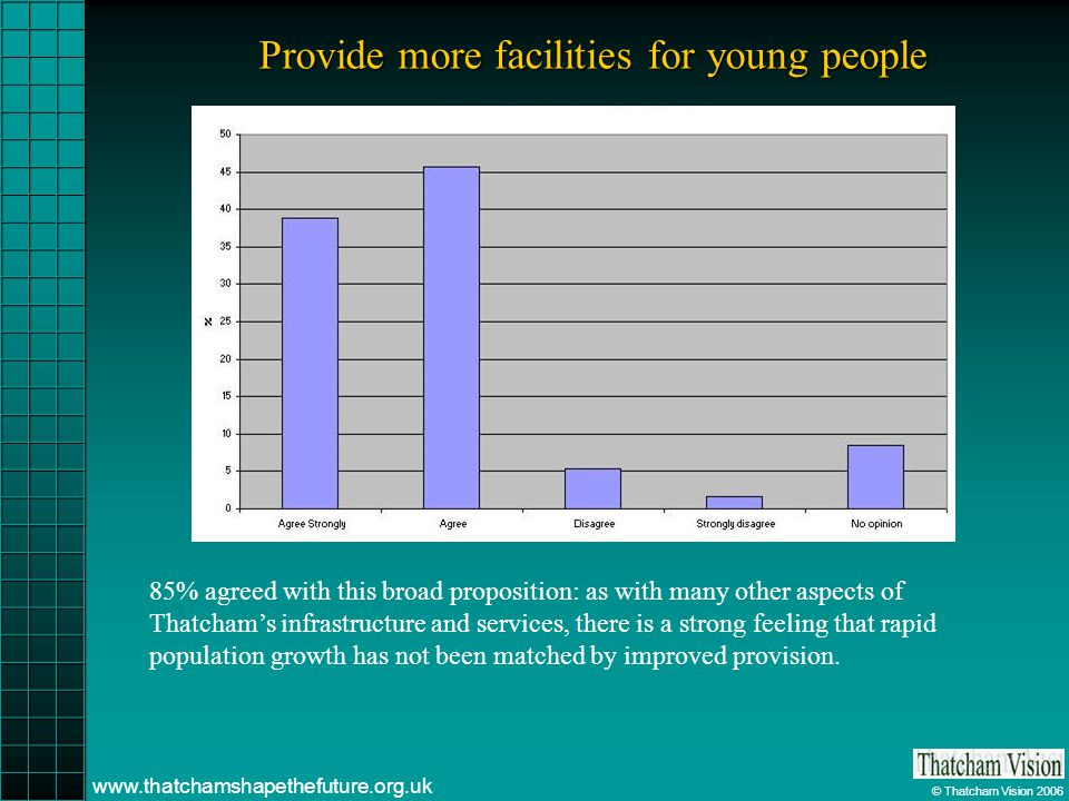 © Thatcham Vision 2006 www.thatchamshapethefuture.org.uk Provide more facilities for young people 85% agreed with this broad proposition: as with many other aspects of Thatchams infrastructure and services, there is a strong feeling that rapid population growth has not been matched by improved provision.